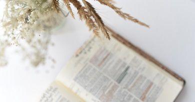 Mensaje de Jesús del día 23 de Mayo de 2014