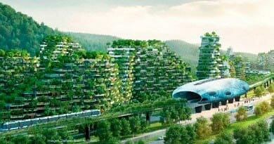 Bosques Urbanos, Ciudades Verdes: conéctate con el regalo de la naturaleza