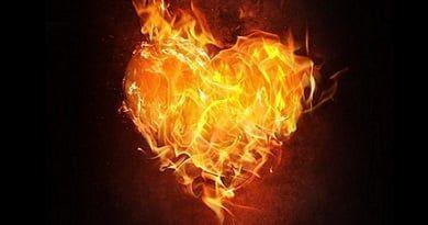 La Verdadera Devoción al Corazón de Jesús.