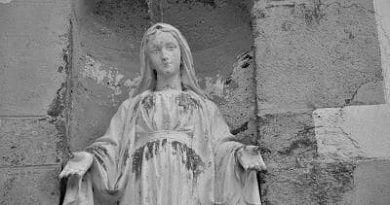 Mensaje de la Virgen del día 02 de Enero de 2011
