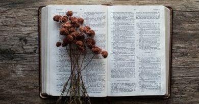 Mensaje de Jesucristo del día 17 de Septiembre de 2011