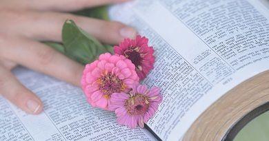 Mensaje de Jesús del día 25 de Agosto de 2012