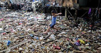 ¡SOS! Los plásticos ya forman parte de nuestra alimentación